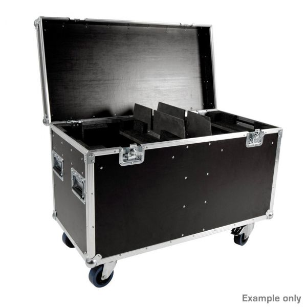 Touring Case 2 x Platinum Wash ZFX PRO Picture 2