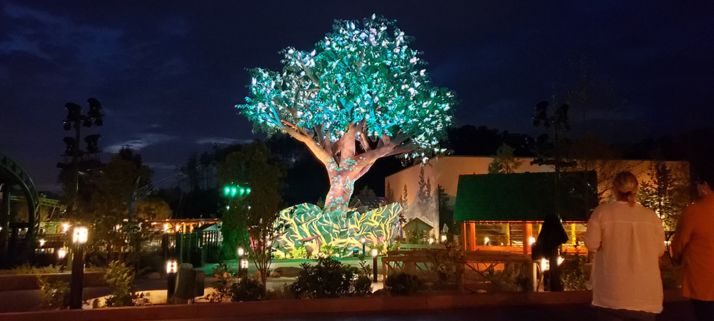Elation shares in magic of Dollywood Wildwood Grove Tree