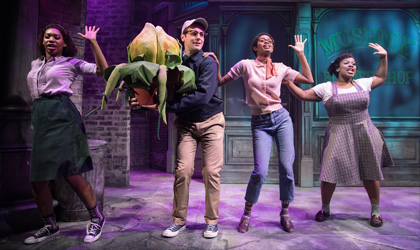 Bradley King lights Little Shop of Horrors with Elation Artiste