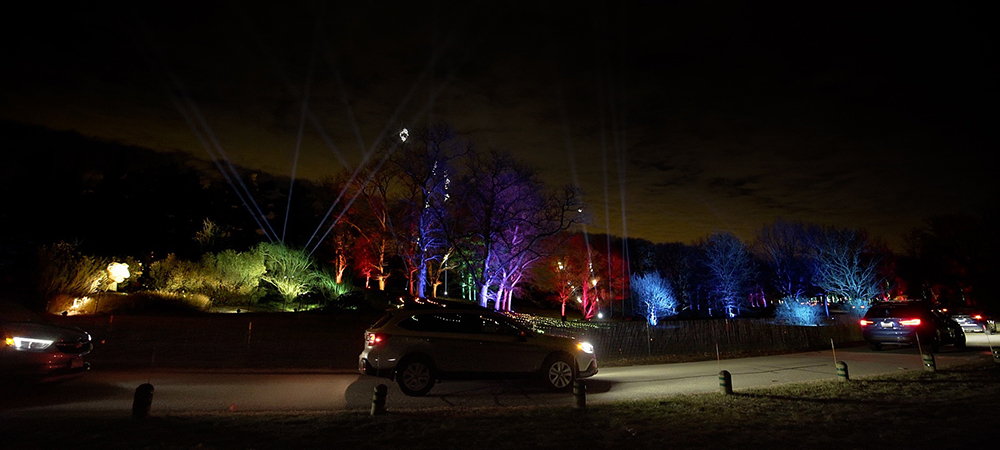 Over 700 Elation lights for 2020 Illumination - Tree Lights at The Morton Arboretum